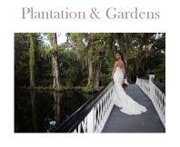 #7 A Lovely Location: Magnolia Plantation in Charleston, South Carolina