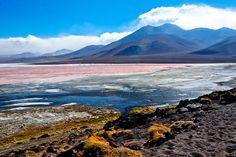 Laguna Colorada by Kuba Los