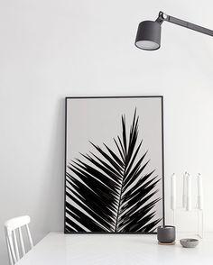 Coco Lapine print