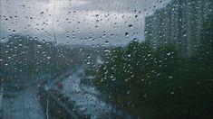 City Window Rain Sleep Sounds - 8 Hours Version White Noise Deep Sleep Meditation Aid - YouTube