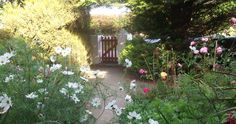 Cape Clear Bed & Breakfast