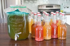 Learn how to get started with and maintain your own Continuous Brew Kombucha System. Make kombucha at home and save hundreds of dollars a year!