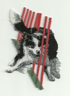 2-1-2-x-3-1-4-Border-Collie-Dog-Breed-Agility-Trick-Embroidery-Patch