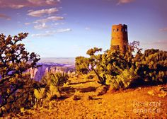 Grand Canyon National Park Golden Hour Watchtower Painting