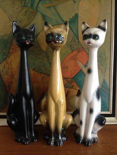 New Jema Holland cats