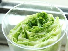 How To Easily Re Grow Romaine Lettuce From A Stump Indoors