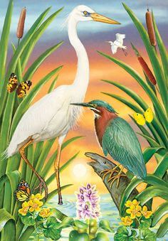 Green And White Herons by Rosiland Solomon