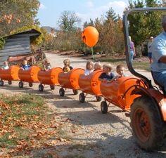 season's must visit: Pumpkin Harvest Festival at Stonycreek Farms