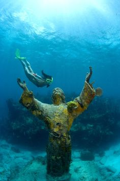 The Florida Keys are a big draw for snorkelers who cherish the undersea panorama. ..` pinned by http://www.wfpblogs.com/author/nicolerichards/ `..