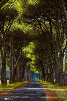 Long Way .. | Marcello Paoli