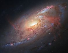 For this stunning image of the spiral galaxy M106, multiple exposures from Hubble were combined with ground-based images from the amateur astronomer Robert Gendler. The galaxy was initially discovered in 1781 by Pierre Mechain, Charles Messier's observing assistant.