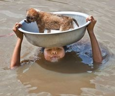 Faith in Humanity Restored: Check These 30 Heart Warming Pictures Amor Animal, Mundo Animal, Faith In Humanity Restored, Tier Fotos, Cane Corso, Sphynx, Mans Best Friend, Dear Friend, Belle Photo