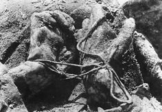 Close up photo of tied hands of a murdered Polish officer during the investigation of the Katyn Massacre; near Smolensk, Soviet Union - 1943