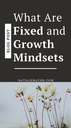 Switching from a fixed mindset to a growth mindset will improve your life. You will learn that failures don't mean you stop and reach more of your goals. When you are in a growth mindset, you're willing to learn, change, and grow so that you live your best life.
