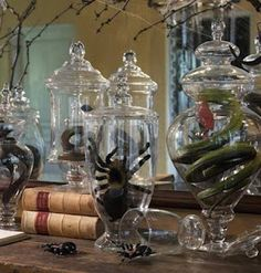 Apothecary jars filled with creepy crawlies
