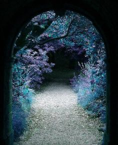 ...stepped into the faerie arch, to take the path laid out in blue. I'd always been partial to the color, after all.