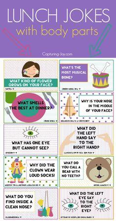 Lunch Jokes with Body Parts - Capturing Joy with Kristen Duke - Kids Ideas Funny Jokes For Kids, Funny School Jokes, Good Jokes, School Humor, Fun Jokes, School Quotes, Lunch Snacks, Kid Snacks, Party Snacks