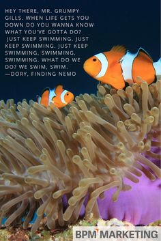 No matter how tough running your business gets, remember to just keep swimming.