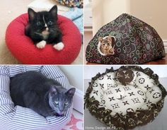 Lovely Cat Beds
