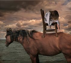 http://pegasebuzz.com/leblog/ | Horse in Photography by Tom Chambers : The Marwari