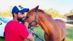 Ravindra Jadeja, Cowboy Hats, Horses, Animals, Cricket, Animales, Animaux, Cricket Sport, Animal