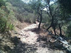 In Escondido, CA - Haunted Elfin Forest Recreation Reserve (also called Harmony Grove) This is a great place to hike, however these woods are extremely haunted. The White Lady is seen along the trails usually in broad daylight. Hikers report being touched on their shoulders and watch as she floats above the ground and passes through objects. Most see a smiling woman from a distance only to realize its a ghostly apparition.