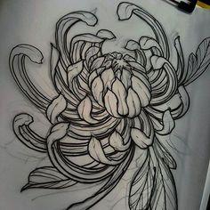 Good morning! Chrysanthemums!