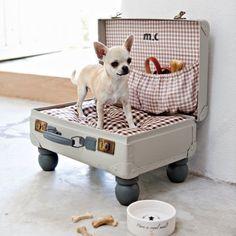 Valise en carton avec 4 pieds en bois de lit, coussin et poche devenue panier pour chien