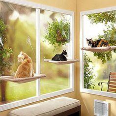 Midmade Sunny Seat Cat Perch Window Pet Bed Midmade https://www.amazon.co.uk/dp/B01N8XTKHU/ref=cm_sw_r_pi_dp_x_8SdByb0R6YMA9