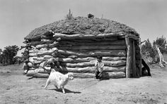 The Navajo tribe in New Mexico and Arizona built hogans. Hogans have six sides built from wood poles and adobe (mud). There was one room in the hogan and the doorway faced to the east. Beautiful Navajo rugs covered the doorway. There was a hole in the roof so smoke from the fires could escape.