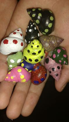 Shells shells.