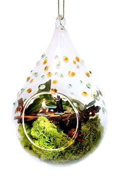 Clear Solar Terrarium Lantern on @HauteLook