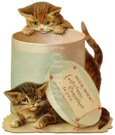 """ MIEW, MIEW, I Wish a Happy Christmas to You""  Sweet Vintage Christmas Kittens"