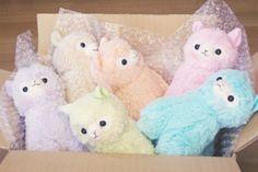 Pastel coloured Alpacasso plushies, super cute and kawaii Alpacas, Kawaii Shop, Kawaii Cute, Kawaii Stuff, Cute Stuffed Animals, Cute Animals, Alpaca Peluche, Tsumtsum, Cute Llama