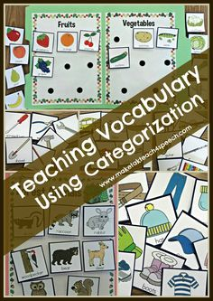 File folder activities for teaching categorization. Great for vocabulary development!