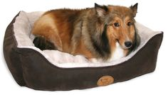 Best Pet Supplies Modern Rectangular Pet Bed -- You can find more details by visiting the image link.