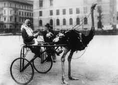 Josephine Baker outside Hotel Adlon, Berlin 1926