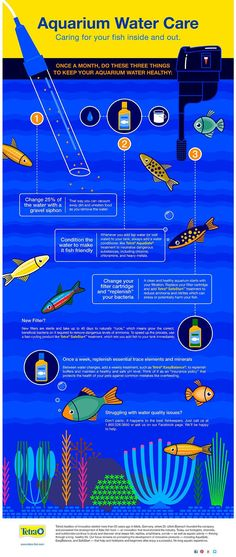 Tetra – Caring for your fish inside and out. #hydroponicsinfographic