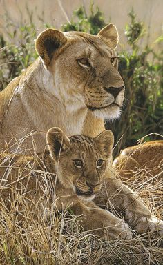 Oil painting > In Safe Arms   by Tony Karpinski, via Flickr