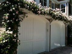 Flowering vine over garage doors