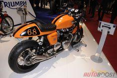 Orange Triumph Thruxton