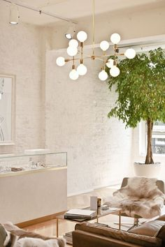 Office space with exposed brick, a large indoor tree, and faux fur throws