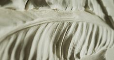 Bas-relief detail of floral design Wall Sculptures, Floral Design, Detail, Floral Patterns