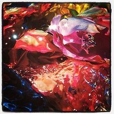 Flowers.  Giles Bensimon. (Taken with Instagram)