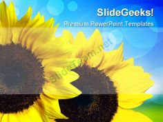 Sunflower Nature PowerPoint Templates And PowerPoint Backgrounds 0211 #PowerPoint #Templates #Themes #Background