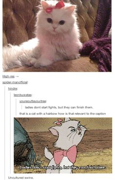 It's Marie from the Aristocats....uncultured swine <-- that comment