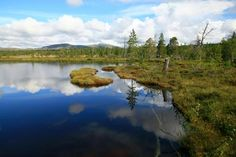 Keski-Skandinavian vaellusreitit - Harri Ahonen - #kirja #keskiskandinavia #vaellusreitit #vaeltaminen #skandinavia Camping, River, Outdoor, Campsite, Outdoors, Outdoor Games, Outdoor Living, Campers, Rivers