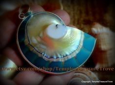 Natural Nautilus shell slice/ 925 silver with beautiful turquoise resin back fill focal bead pendant Sacred Geometry (item NSR-TS3) by TemplesTreasureTrove on Etsy