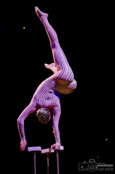 Cirque Du Soleil - Varekai - next week ! Dark Circus, Circus Art, Circus Clown, Day Of Dead, Dark Fantasy Art, Boris Vallejo, Royal Ballet, Cirque Du Soleil Varekai, Art Du Cirque