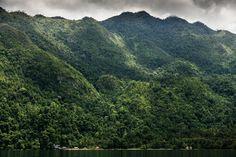 Seram - Ora - View on the rainforest and coast of Seram, Maluku.